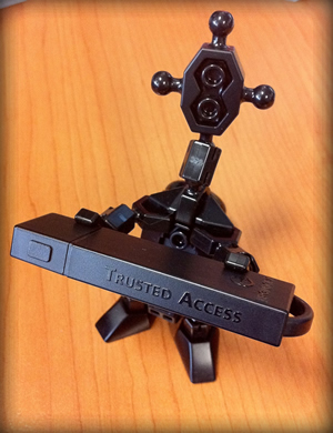Trusted access robot desk toy